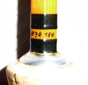 Brunner type teichl (7)